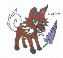 Lupine by Ardomew