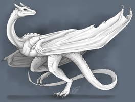 White Wyvern by RaptorBarry