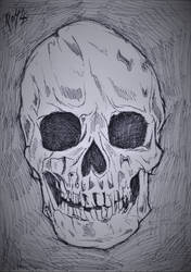 Skull by Ro4le