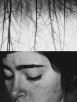 mist by BridgetCross