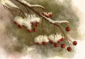 Wintereinbruch by unikatdesign