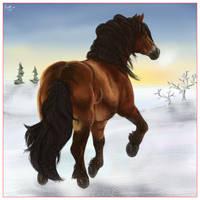 North-Sweden horse in snow by Emlis