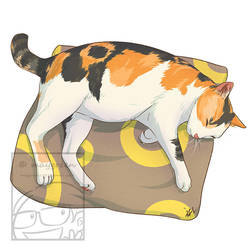 Sleeping Cat Tricolor Calico by Maygreen