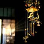 Rays by HamidQureshi