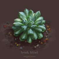 Irish Mint sketch by sunsetagain