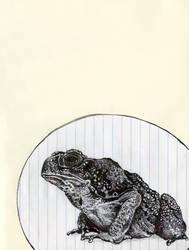 mr. toad by Cephalopodwaltz