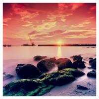 LP by lxrichbirdsf