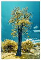 Treebute 3 - T'h'ree in One by lxrichbirdsf