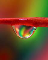 Rainbow Drop by enchantma