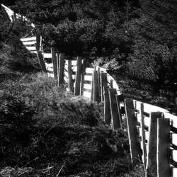 fence by crh