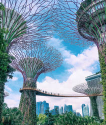Singapore by linakononenko
