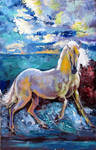 Horse on beach by MOHSENSEPEHRI