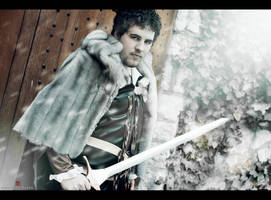 Robb Stark- A song of ice and Fire by MixUpCosplay