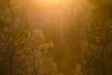Uinta Sunset by CaseyNealArtwork