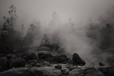The Mist by CaseyNealArtwork