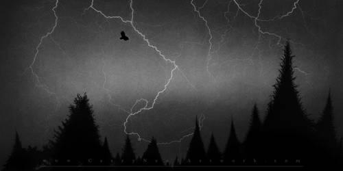 Silhouette by CaseyNealArtwork