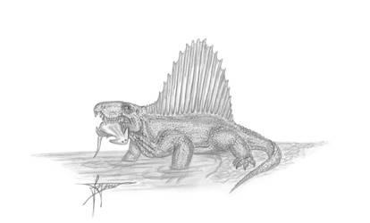 Dimetrodon by mixtix-freeman