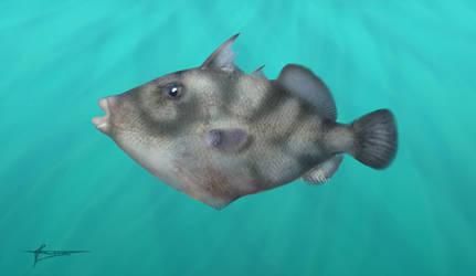 Prehistoric triggerfish Oligobalistes by mixtix-freeman