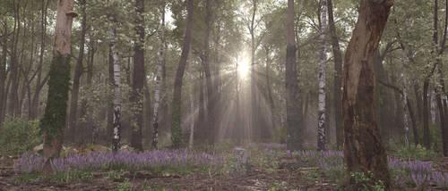 Woods deep by c-ramgfx