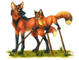 Fox On Stilts by Idess