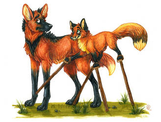 Fox On Stilts by Idess