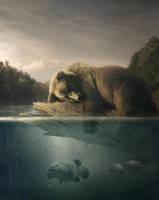 Bear Problems by BenjaminHaley