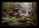 Horsehoe Falls, Tasmania by WiseWanderer