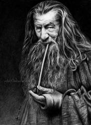 Gandalf, The Grey by Esteljf