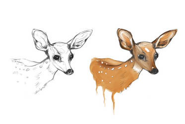 Deers by Veepxr