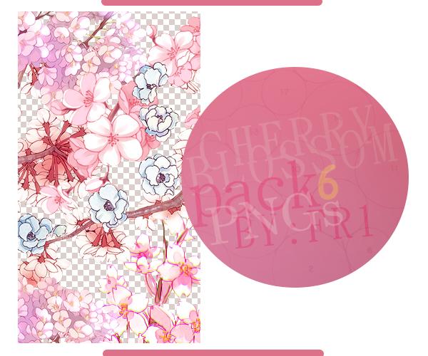 Cherry Blossom PNGs by Ameryca