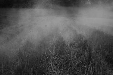 Dark 1 by Pati-szonek