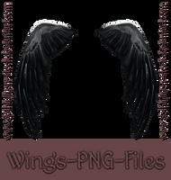 Winged Dark-by-GothLyllyOn-Stock by GothLyllyOn-Sotck