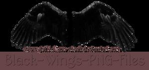 Black Wings-by-GothLyllyOn-Stock by GothLyllyOn-Sotck