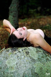 Portrait on the Rock by DavidGold