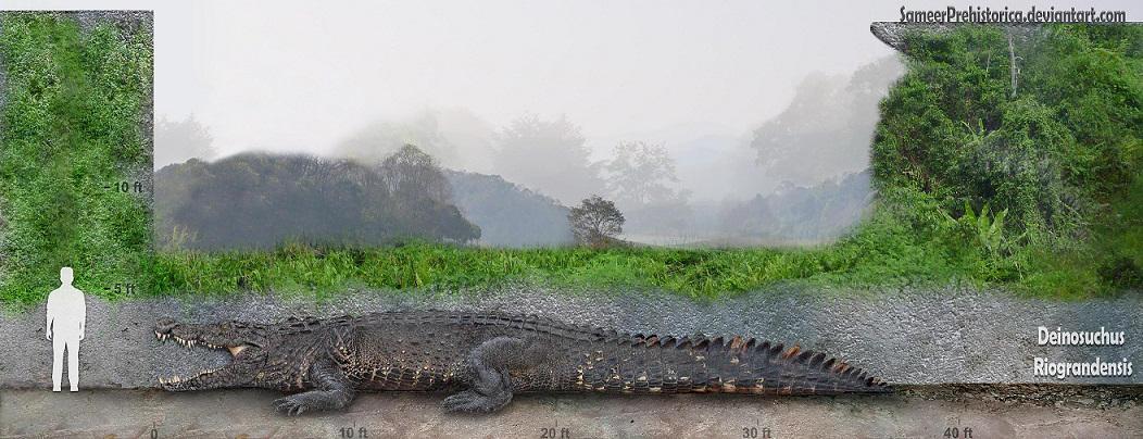 Deinosuchus by SameerPrehistorica