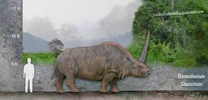 Elasmotherium Caucasicum by SameerPrehistorica