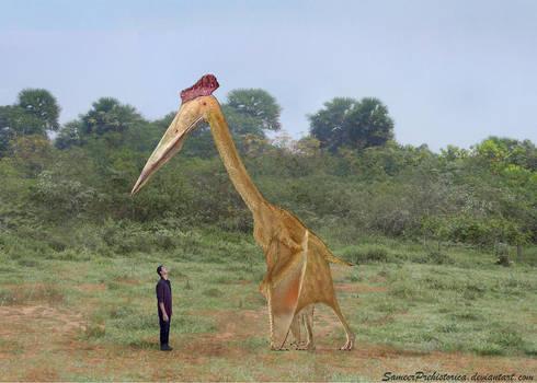Hatzegopteryx by SameerPrehistorica