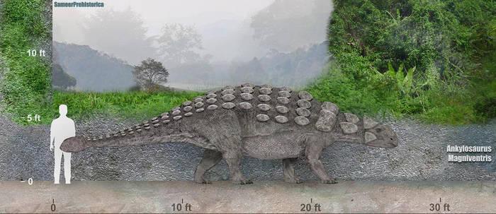 Ankylosaurus by SameerPrehistorica