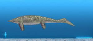 Shastasaurus by SameerPrehistorica