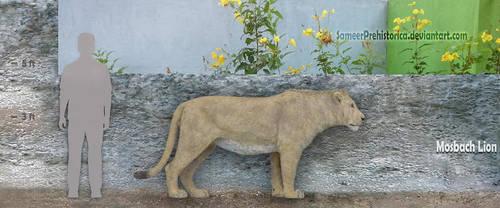 Mosbach Lion by SameerPrehistorica