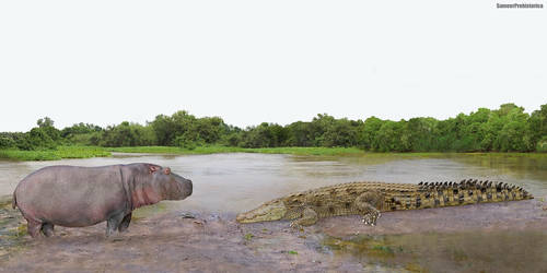 Hippopotamus vs Saltwater Crocodile by SameerPrehistorica