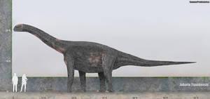 Jobaria Size by SameerPrehistorica
