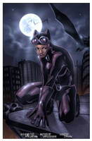Catwoman by erickenji