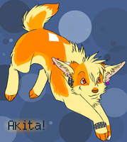 -- Akita -- by Alexa-chan
