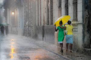 Yellow Umbrella by pwillyams