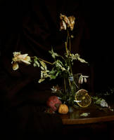Still life by beriquito