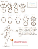 Anatomy Study Guide P2 by Midnightsquad