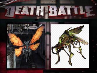DB Huge Bugs by userup