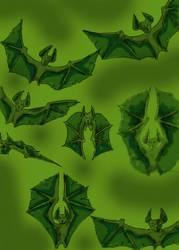 bats by chaitanyak