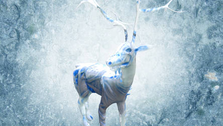 Whitewalker Deer by chaitanyak